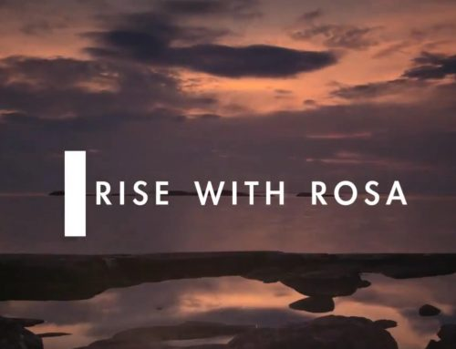 RISE WITH ROSA – EPISODE 09 – LESS IS MORE- STOP TRYING